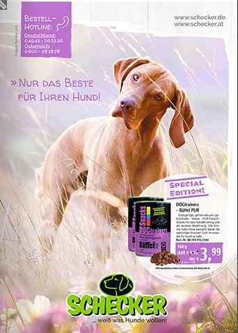hundebedarf kataloge kostenlos